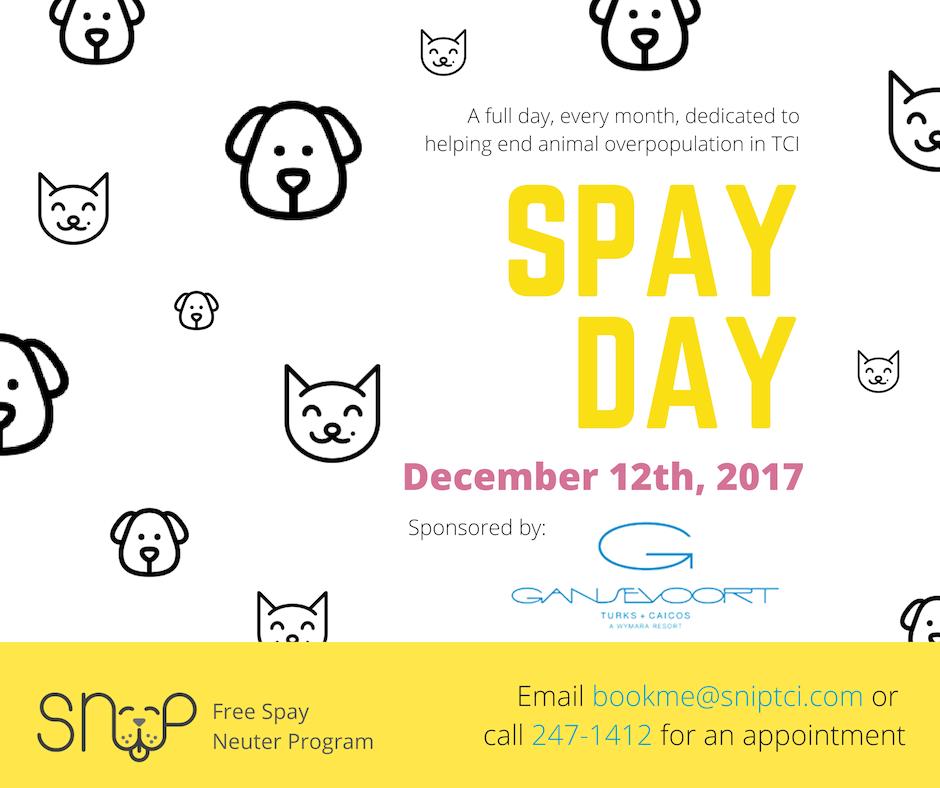 SNiP TCI SNiP Spay Day Sponsored by Gansevoort