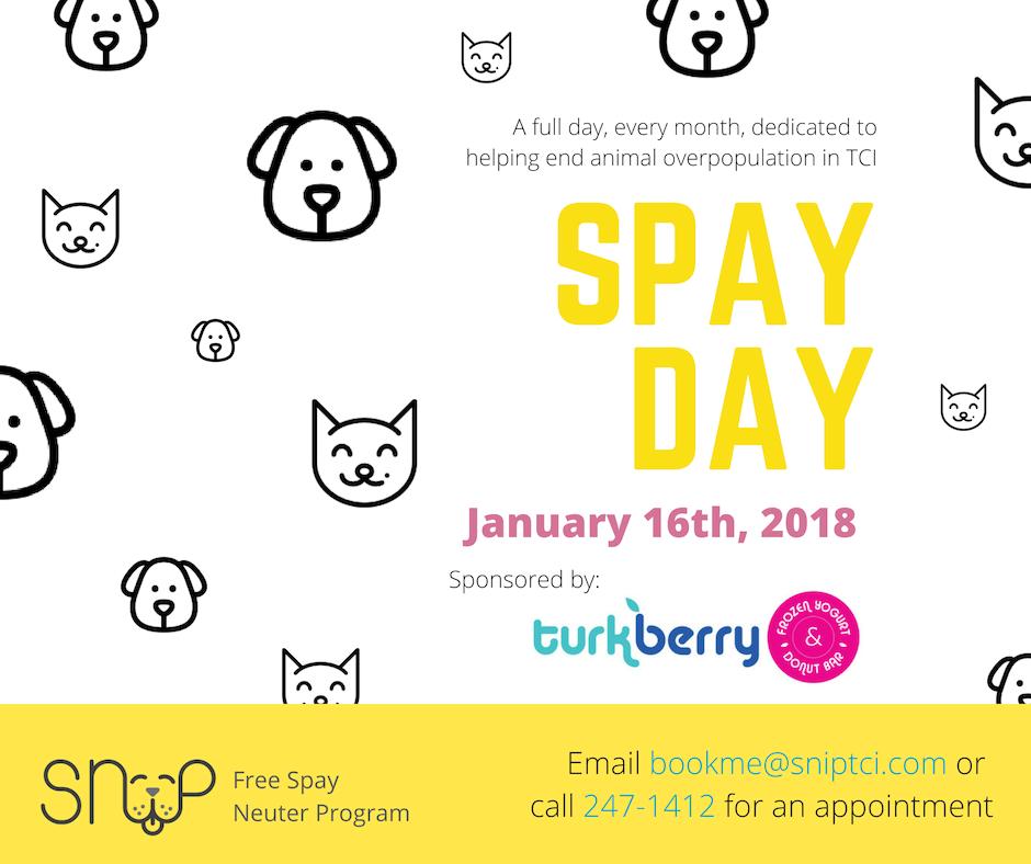 SNiP Spay Day Sponsored by Turkberry