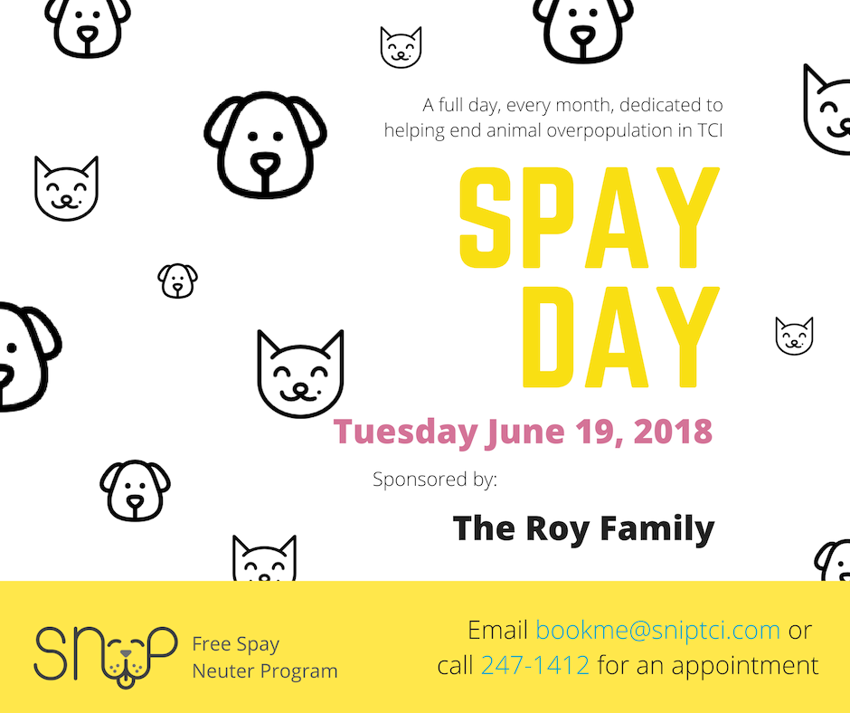 SNiP Clinic Sponsored by The Roy Family