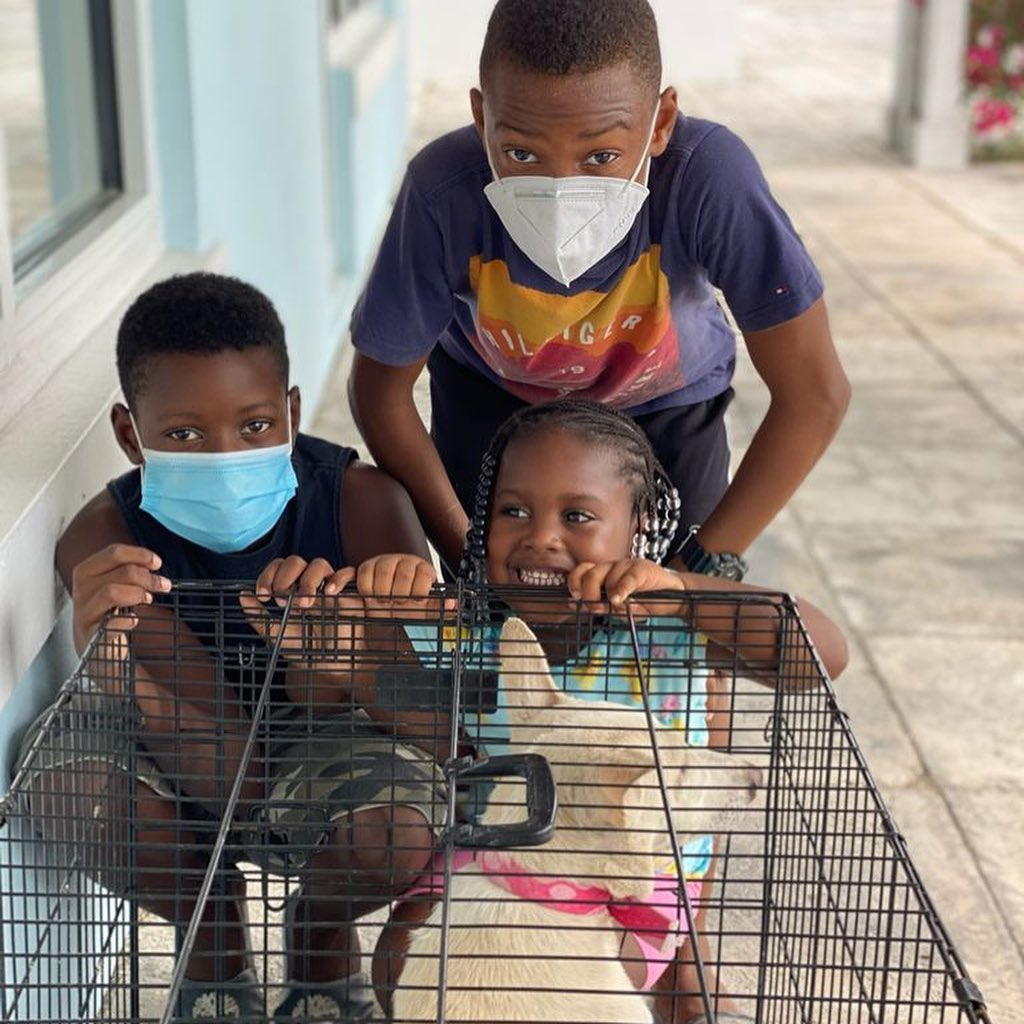 SNiP TCI Clinic Clients